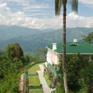 glenburn_tea_estate_darjeeling
