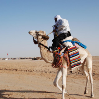 Expert-Led Journey: Festival of the Sahara, 24th - 31st December 2014