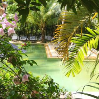The pool at Why House, luxury hotel Sri Lanka