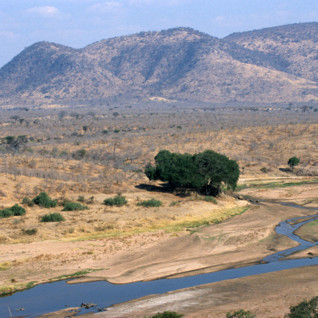 The Selous & Ruaha National Parks