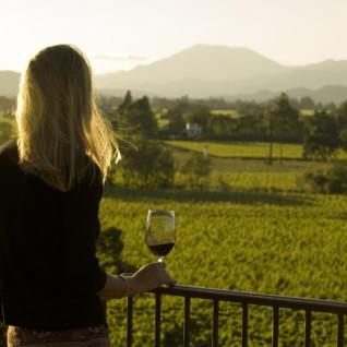 Napa & Sonoma Valleys Wine Region