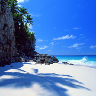 Picture of small white sandy beach in Seychelles