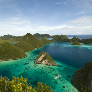 Picture of Arenui Liveaboard Raja Ampat