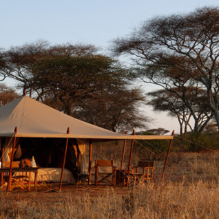 Olivers Camp, luxury camp in Tanzania