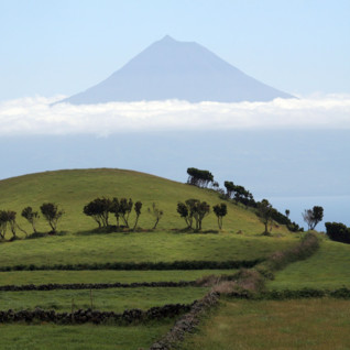 Picture of Azores landscape