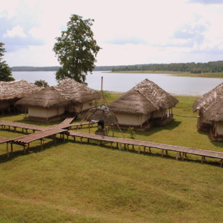 The Bison Resort