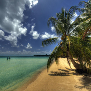 Picture of a beautiful beach in Chuuk