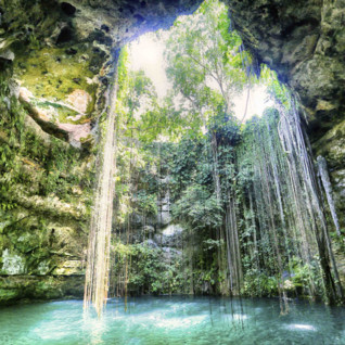Day at a Cenote