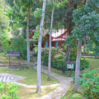 Bukit Lawang Eco Lodge