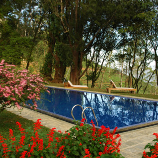 The Pool at Tea Trail Bungalows, luxury hotel in Sri Lanka