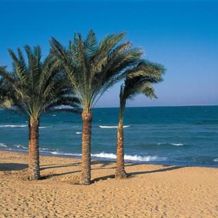 The beach at The Oberoi, Hurghada, Egypt