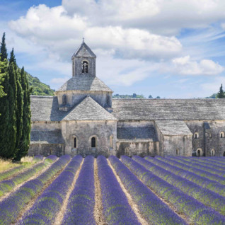 Medieval house and lavendar