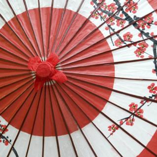 Japanese Parasol