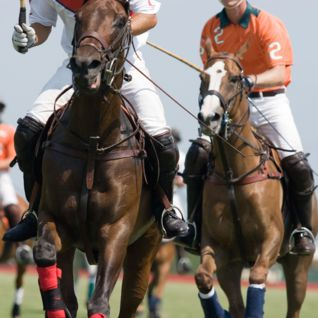 Playing polo