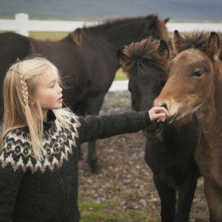 Family Iceland