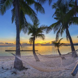 Hammock on beach, Fiji