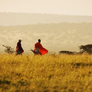 The Masai Mara