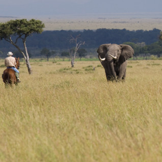 Riding Safaris in Kenya