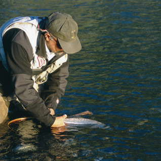 Fly Fishing in Northern Patagonia