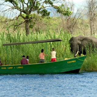 Liwonde National Park & The South