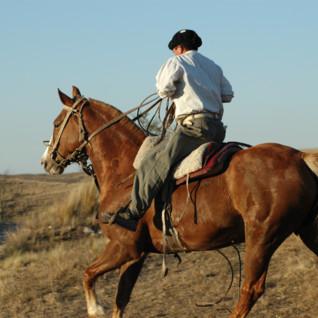 Riding & Polo