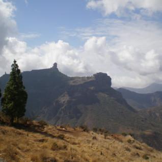Climb Mount Teide