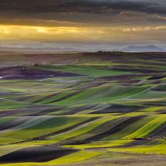 Puglia-landscape