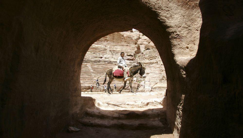 Donkey, Jordan