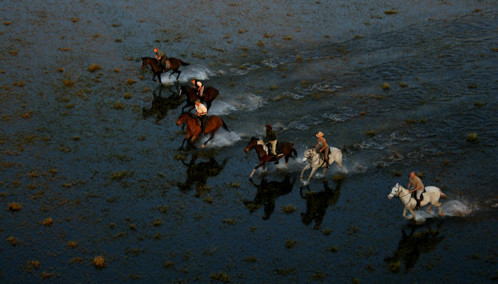horseriders gallop through water