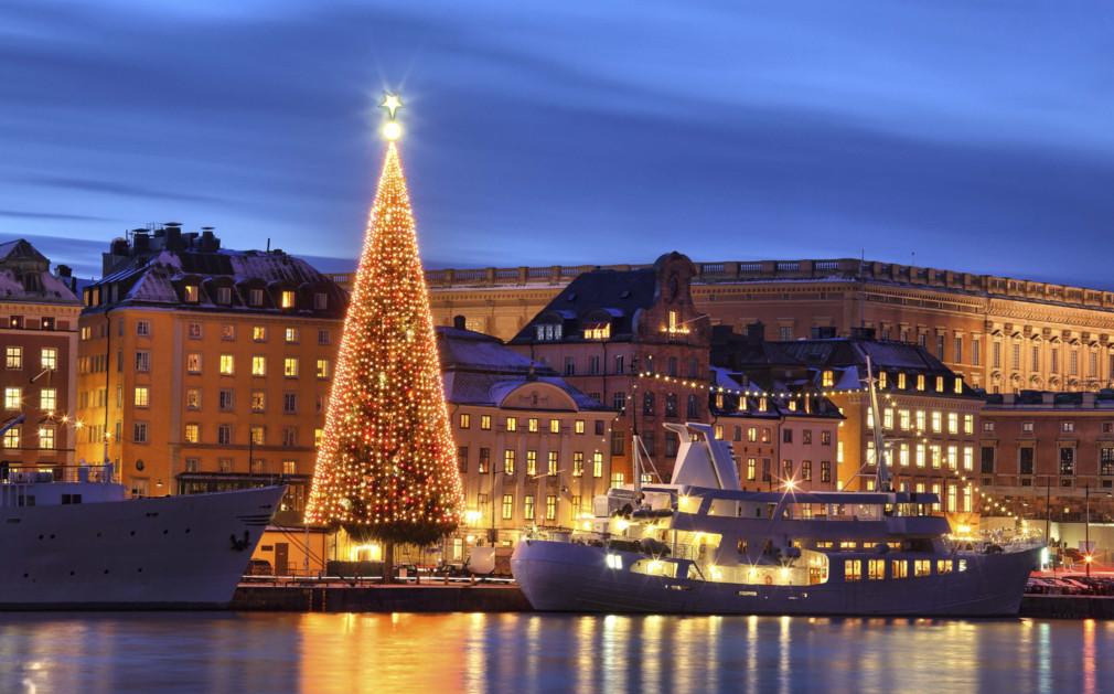 Christmas Tree No Lights