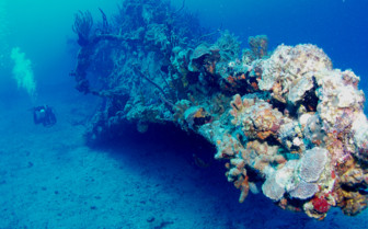 Picture of HMS Rhone and Diver British Virgin Islands