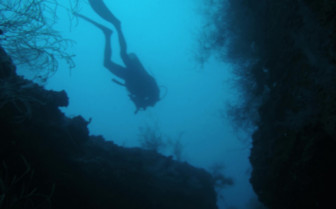 Picture of Wreck Dive Djibouti