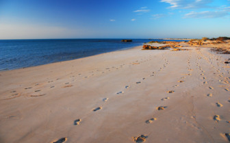 Picture of the Beach at Ningaloo Reef