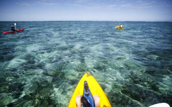 Picture of Kayaking at Ningaloo Reef