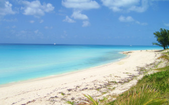 Picture of Nice beach on Bimini