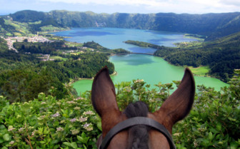 Picture of Azores Cete Cidades