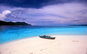 Picture of Beautiful beach in Raja Ampat