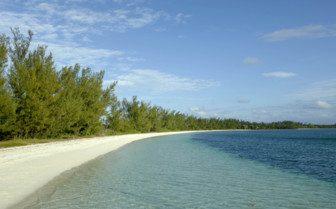 Picture of a beach in the Abacos