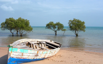 Picture of Boat on the beach south coast Mozambique