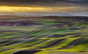 Rolling Fields and Hills