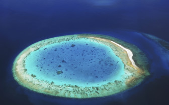 An Island In The Maldives From The Air