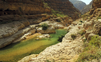 The Green Water of Wadi Shams