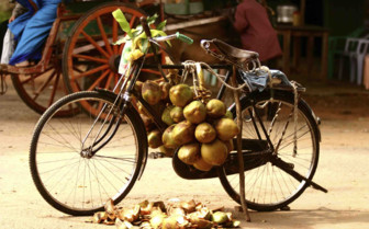 Bicycle adorned with potatoes