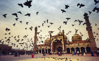 Birds flying outside the Masjid Mosque