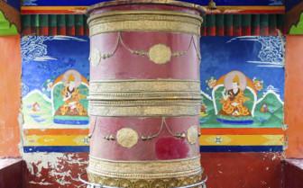 Detail in Ladakh