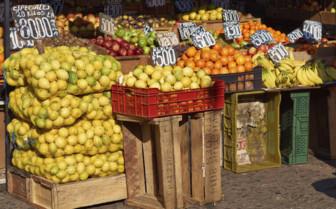 A Santiago Fruit Market