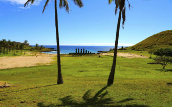 Moai Glimpsed Between Palm Trees - Chile