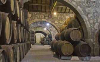 Barrels in Porto