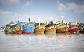 Mekong Delta Boats