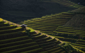 Glinting Sunlight on Sapa Hills